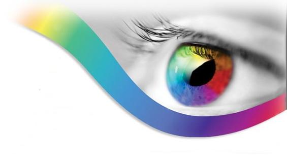 webdesign-eye