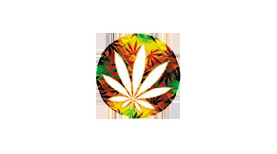 CannaMed Jamaica